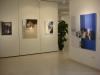 15- exposició s´Alamera, 2010